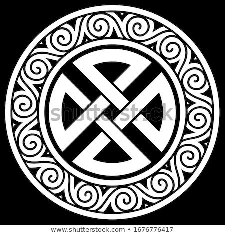 Celtic shield Stock photo © stefanoventuri