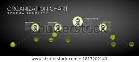 Minimalist company organization hierarchy schema diagram template  Stock photo © orson