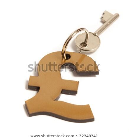 Font kulcsok siker számítógép billentyűzet ibolya pénz Stock fotó © paviem