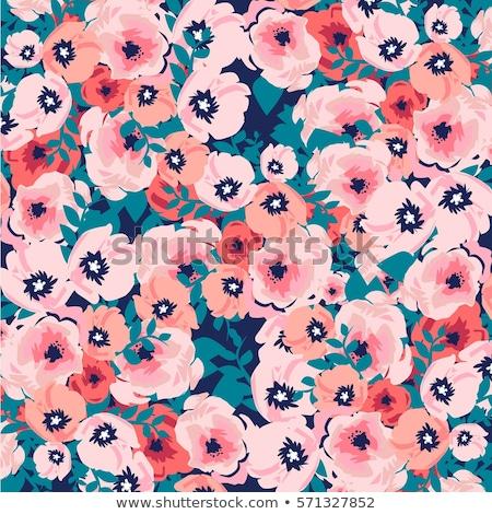 klaprozen · witte · voorjaar · ontwerp · zomer · groene - stockfoto © essl