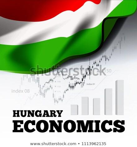 Magyarország közgazdaságtan magyar zászló üzlet diagram Stock fotó © m_pavlov
