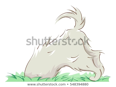 Playful Dog Half Body Dig Stock photo © lenm