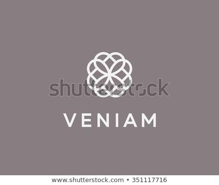 vector flower logo abstract icon design stock photo © blaskorizov
