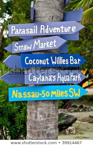 bahamas summer holidays beach sign symbol Stock photo © vector1st
