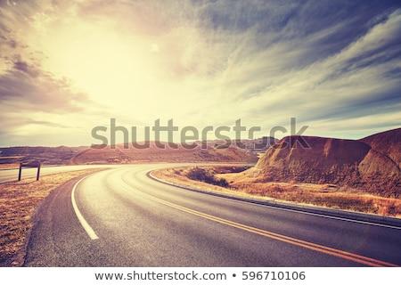 A desert road landscape Stock photo © colematt