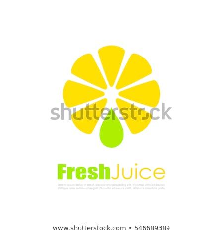 Lemon Citron Citrus Closeup Vector Illustration Stock photo © robuart