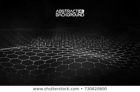 Meetkundig zwarte veelhoek cirkel vector abstract Stockfoto © blaskorizov