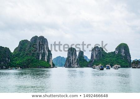 mausoleum · Vietnam · asia · geschiedenis · cultuur - stockfoto © galitskaya