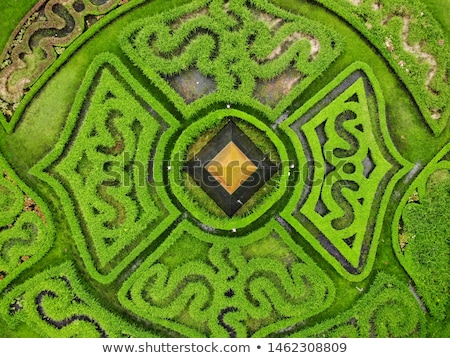 An Elevated View Of Labyrinth Stock photo © AndreyPopov