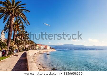 Ansicht Port Korsika Frankreich Hand Stock foto © nito