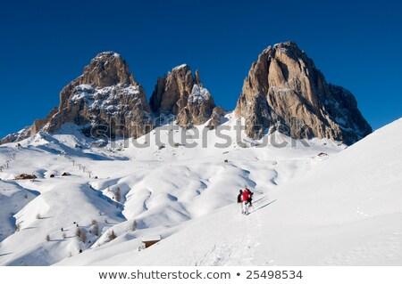 イタリア語 アルプス山脈 山 カバー 雪 日光 ストックフォト © frimufilms