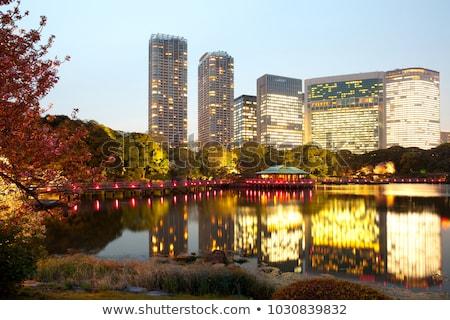 hamarikyu gardens public park in tokyo city, japan Stock photo © dolgachov