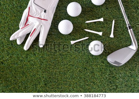 Sport object related to golf equipment  Stock photo © stoonn