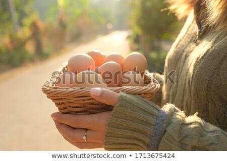 ürünleri · pişirme · kahvaltı · süt · sahanda · yumurta · sosis - stok fotoğraf © studiostoks