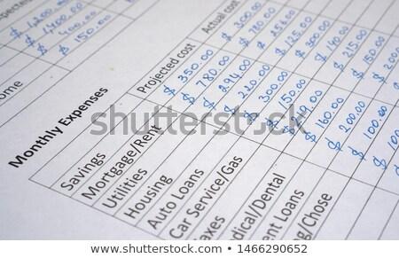 Berekenen familie budget huishouden inkomen Stockfoto © olivier_le_moal