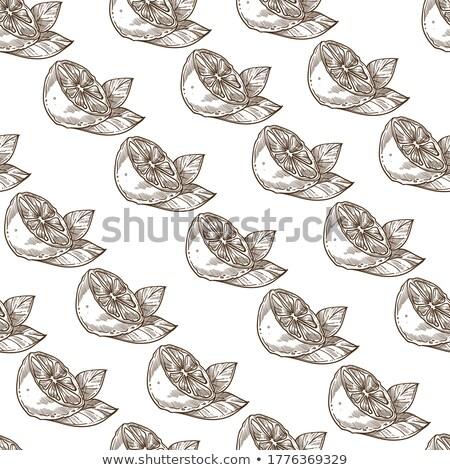 石灰 エキゾチック 柑橘類 カット スライス モノクロ ストックフォト © pikepicture