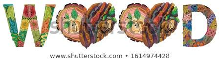 Hout doodle harten boom schors textuur Stockfoto © Natalia_1947