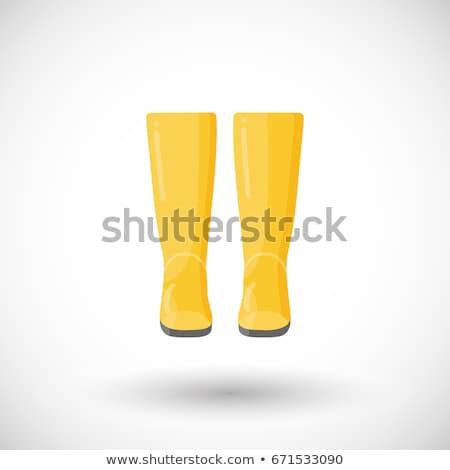 Rain boots. Flat color icon. Winter footwear vector illustration Stock photo © Imaagio
