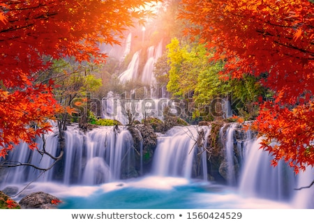 fall leaves by waterfall stock photo © backyardproductions