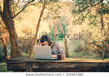 Woman with laptop on green lawn Stock photo © stryjek