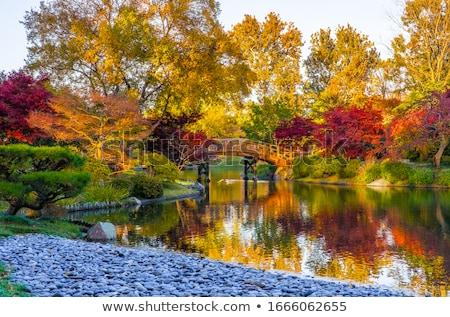 Stock fotó: Wooden Bridge At Japanese Garden In Fall