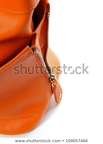 Zip of Women's Ginger Handbag  Stock photo © zhekos