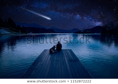 shooting man and dog Stock photo © photography33