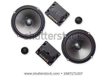 Audio dynamica geïsoleerd witte partij Stockfoto © shutswis