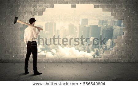 Break Through The Walls To Success Stock photo © Lightsource