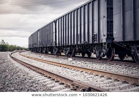 железнодорожная станция поезд промышленности промышленных стали черного и белого Сток-фото © ABBPhoto