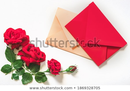 Woman laying out sheets of wallpaper Stock photo © photography33
