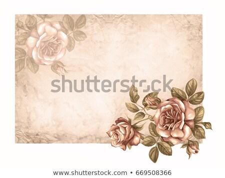 цветочный пергаменте кадр готовый текста дизайна Сток-фото © mannaggia