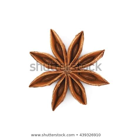 изолированный звездой анис фон белый украшение Сток-фото © M-studio