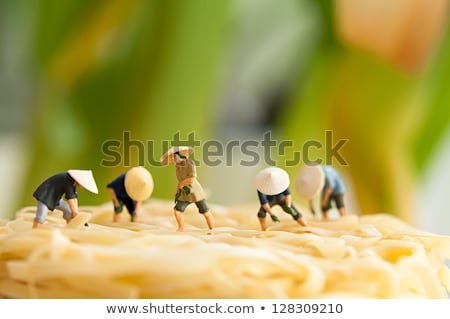 Peasants on noodle field Stock photo © Kirill_M