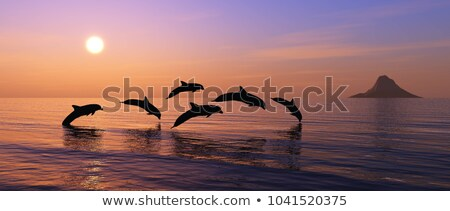 Freedom of the dolphins - 3D render Stock photo © Elenarts