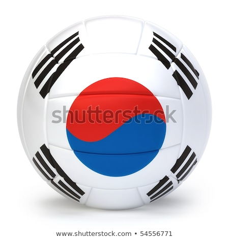 zuiden · volleybal · team · geïsoleerd · achtergrond - stockfoto © bosphorus