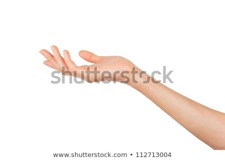 mutat · nő · kettő · kezek · üres · termék - stock fotó © oly5
