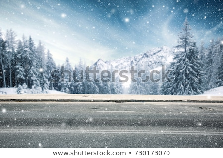 Winter road covered in snow Stock photo © phila54
