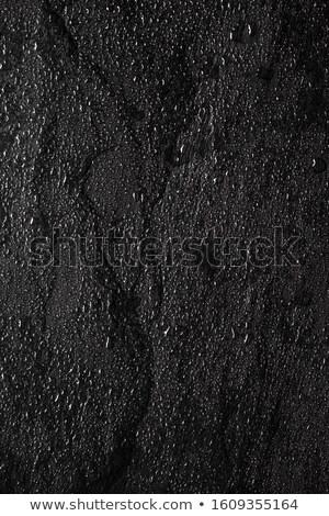 wet black stones stock photo © nito