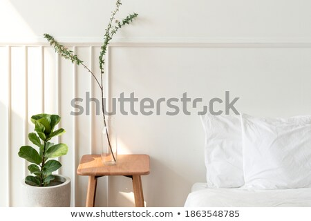 Empty room with mattress and floral bedding Stock photo © iriana88w