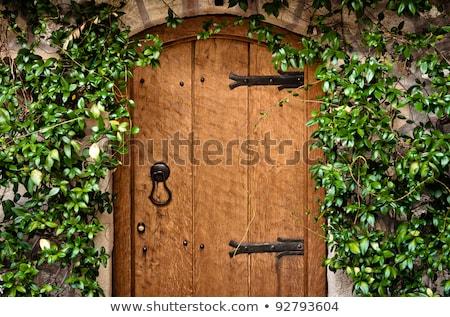 Wyblakły czarny ogród drzwi sepia kwiat Zdjęcia stock © dutourdumonde