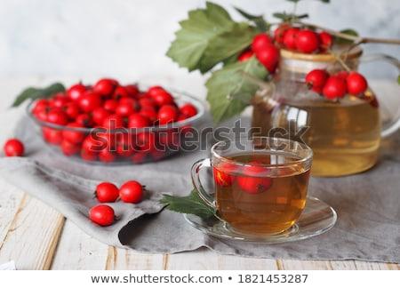 Herbaty charakter owoców tle zielone pić Zdjęcia stock © yelenayemchuk