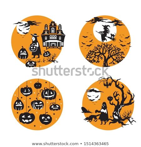 Halloween illustration with witch on pumpkin lantern Stock photo © Elmiko