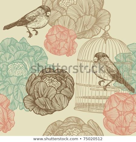 Boceto vector primavera mano Foto stock © kali