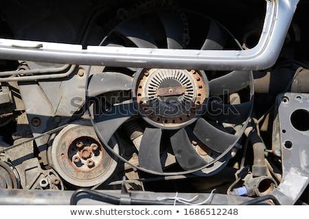erőteljes · ventillátor · padló · izolált · fehér · természetes - stock fotó © stocksnapper