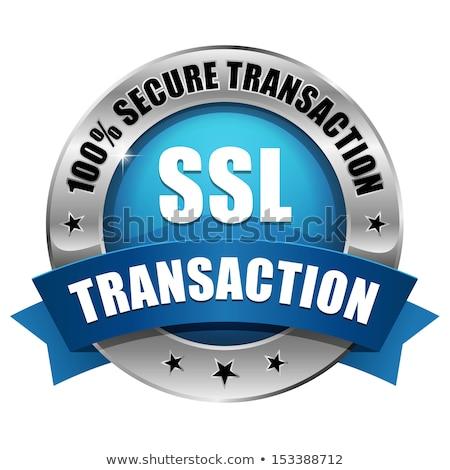 Segura transacción azul vector icono botón Foto stock © rizwanali3d
