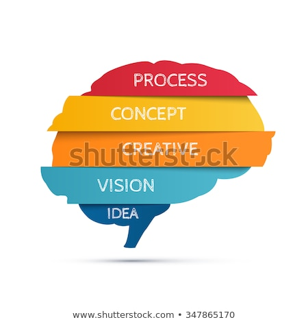 Brain infographic concept stock photo © vectorikart