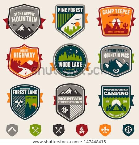 лесу кемпинга Знак иллюстрация эмблема дизайна Сток-фото © mikemcd