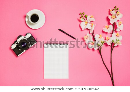 old photocamera and pink orchid stock photo © srnr
