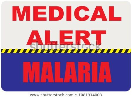 малярия аннотация Цифровая иллюстрация цифровой коллаж иллюстрация Сток-фото © kgtoh